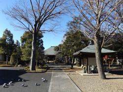 Kawaguchi_maekawa2