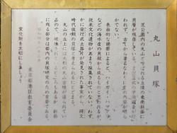 Minakoku_shiba19