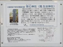Kawasaki_noborito29