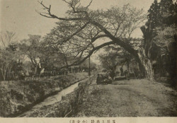 Tamagawajyosui