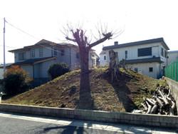 Urawa_shirakuwa05