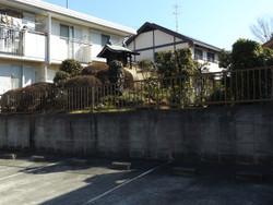 Urawa_shirakuwa11