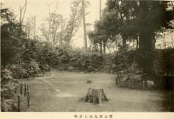Shibamaruyama6