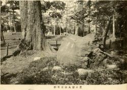 Shibamaruyama7