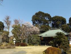 Kawaguchi_kouzenin1
