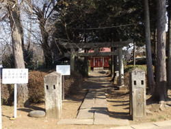 Kawaguchi_sarugai8