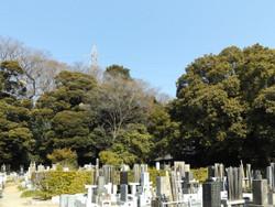 Kawaguchi_takainari1