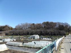 Kawaguchi_kizoro3