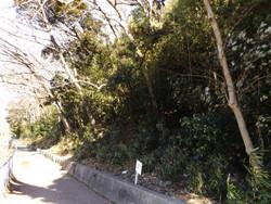 Kawaguchi_kizoro6