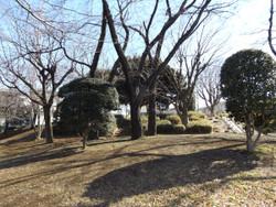 Kawaguchi_maeno8