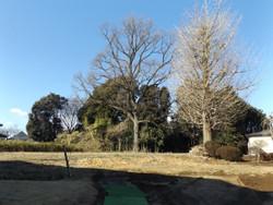 Kawaguchi_miyaai2