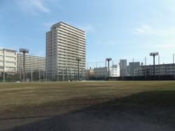 Arakawaku_baseball2