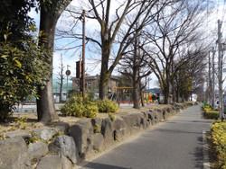 Kitaku_rikugun1