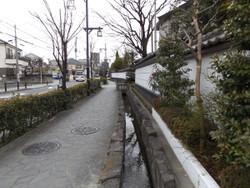 Adachi_hogima31