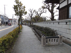 Adachi_hogima33