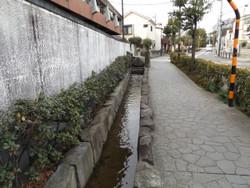 Adachi_hogima34