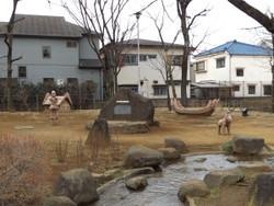 Adachi_shirahata4