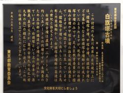 Adachi_shirahata9