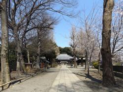 Oji_hiratsuka1