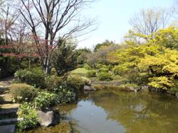 Adachi_higashi5