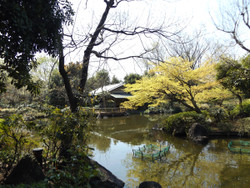 Adachi_higashi7