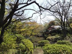 Adachi_higashi8