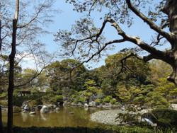 Adachi_ouka3