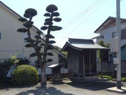 Kawaguchi_haguro1