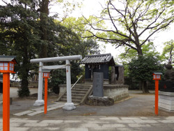 Adachi_hikawa3