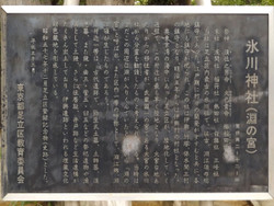 Adachi_hikawa9