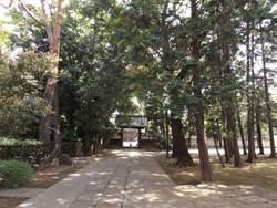 Urawa_motobuto1