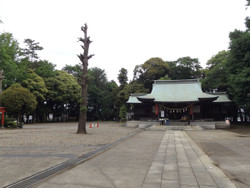 Kawaguchi_mine2