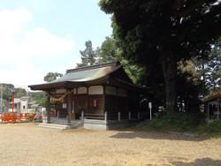 Kakaguchi_yanagi2
