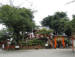 Warabi_tsukagoshi11