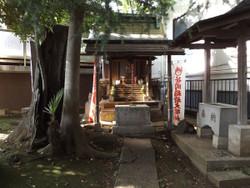 Kitaurawa_sasaoka2