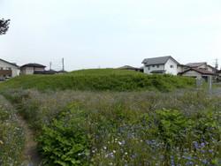 Maebashi_kinkanzuka2