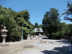 Kawaguchi_sashima12