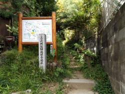 Kawasaki_ozawa01