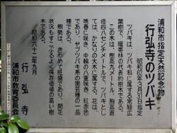 Urawa_gyokou9