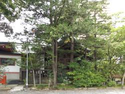 Koshigaya_katori3