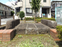 Shiki_mujina2
