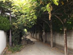 Urawa_tsuji8