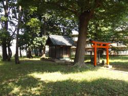 Urawa_sankaku3