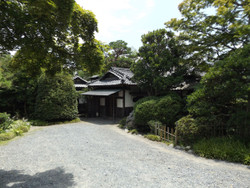 Yorii_kyotei1