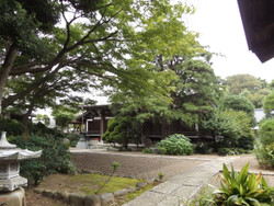 Kawasaki_tama22