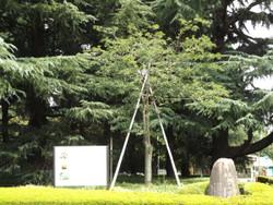 Seitoku32