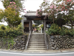 Tochiya_shimabu1