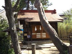 Sakuraku_12