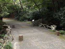 Shinjyukugyoen83