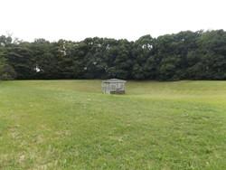 Mitaka_shigosen2